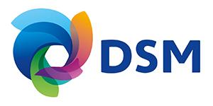 DSM_1